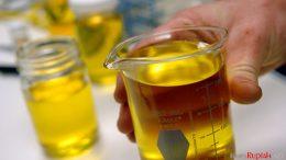 Biodiesel - www.twincities.com