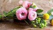 Bunga Potong - www.rumah.com