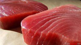 Harga, ikan, tuna, di, pasaran, ukuran, besar, sedang, kecil, kiloan, pasar, Ternate, Pharaa, nelayan, sirip, kuning, biru,